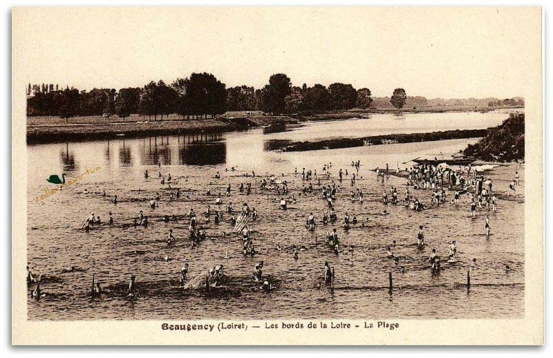 La plage de Beaugency collect