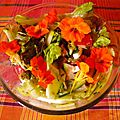 Des capucines dans notre salade
