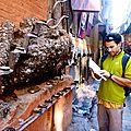 Katmandou - une pi�ce pour la sant� des dents