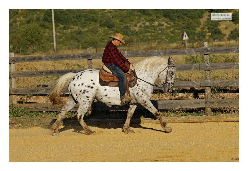 hotos JMP©Koufra 12 - El Rancho - Le Mas de Sisco - 25082020 - 0243