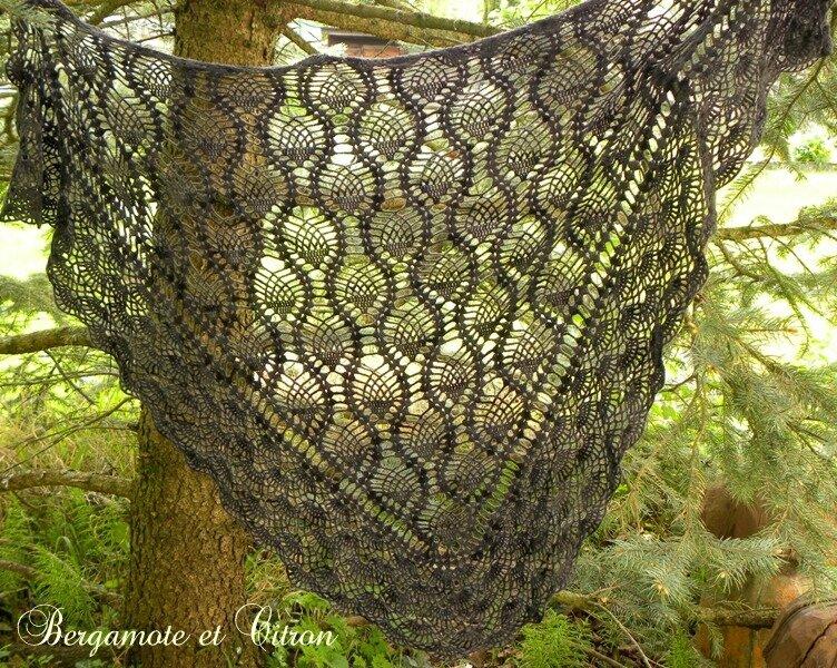 Victoria shawl 2
