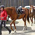 balade equestre gastronomique à La Lucerne d'Outremer (187)