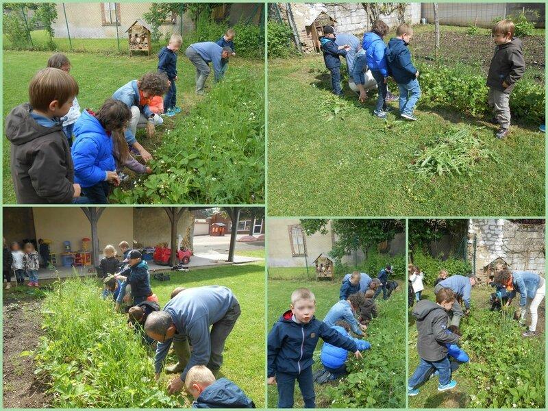 A jardin 6