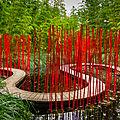 Jardin japonais : au milieu des roseaux et des bambous... serpente un chemin...