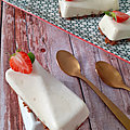 Cheesecake au skyr mangue /passion , mascarpone et spéculoos