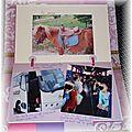 album p 8