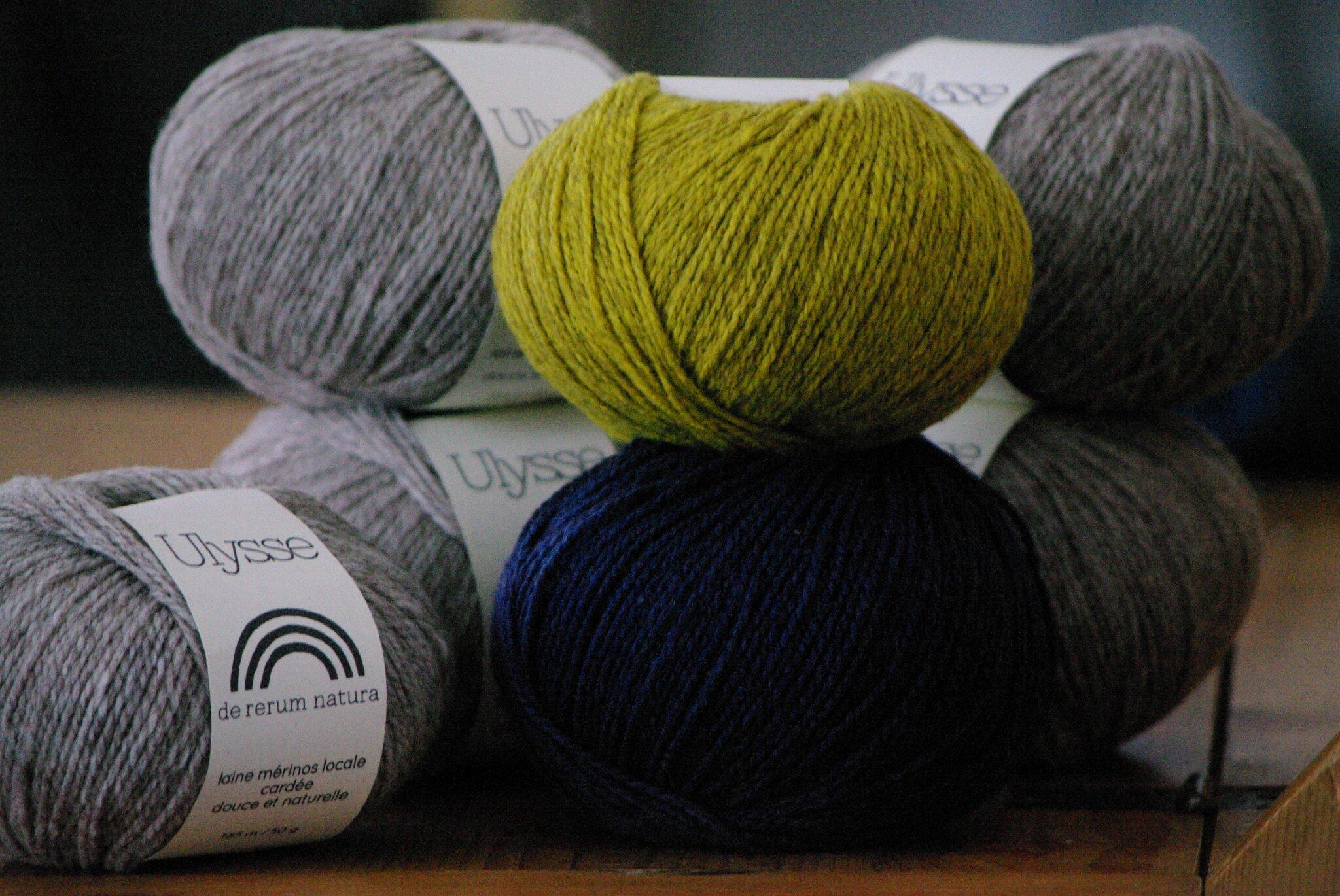 aimer la laine Ulysse de De rerum natura