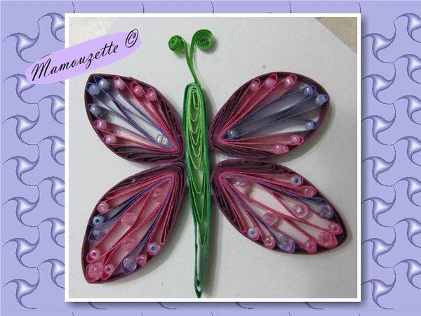 papillonviolet4