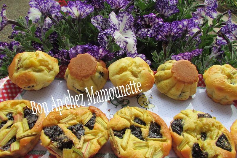 petits gâteaux et mini tartelettes rhubarbe du jardin pruneaux 018-
