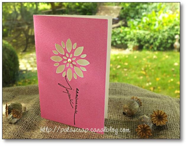 carte graphique rose