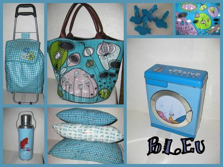 bleu_manue_and_co