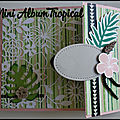 Aperçu du mini album tropical (atelier)
