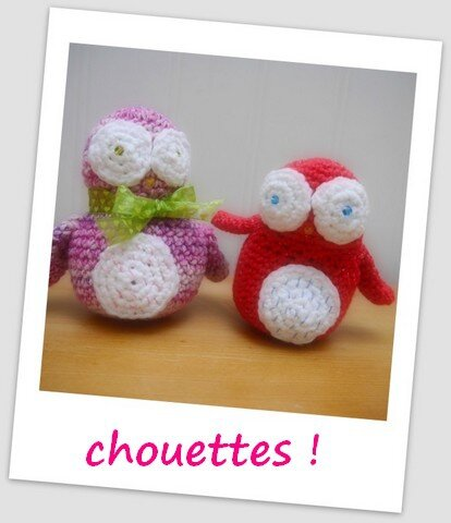 chouettes__