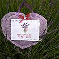 L'herbier du jardin en point de croix