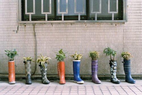 jardin dans la decobelge (274)