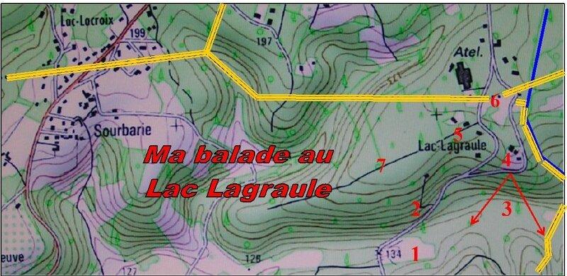 Lagraule1