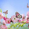 Le printemps est l'occasion d'un nettoyage de l'organisme...