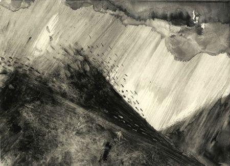 paysage 10