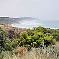 day7greatoceanroad10