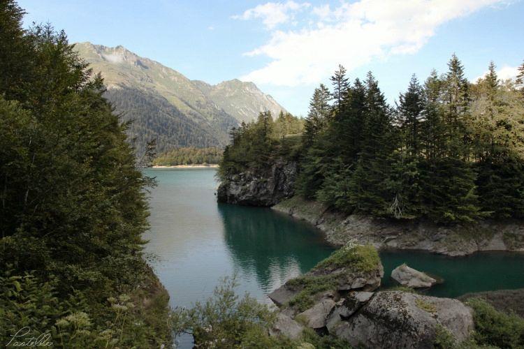 Lac Bious_13 04 08_8591