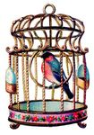 birdcage_graphicsfairy002a