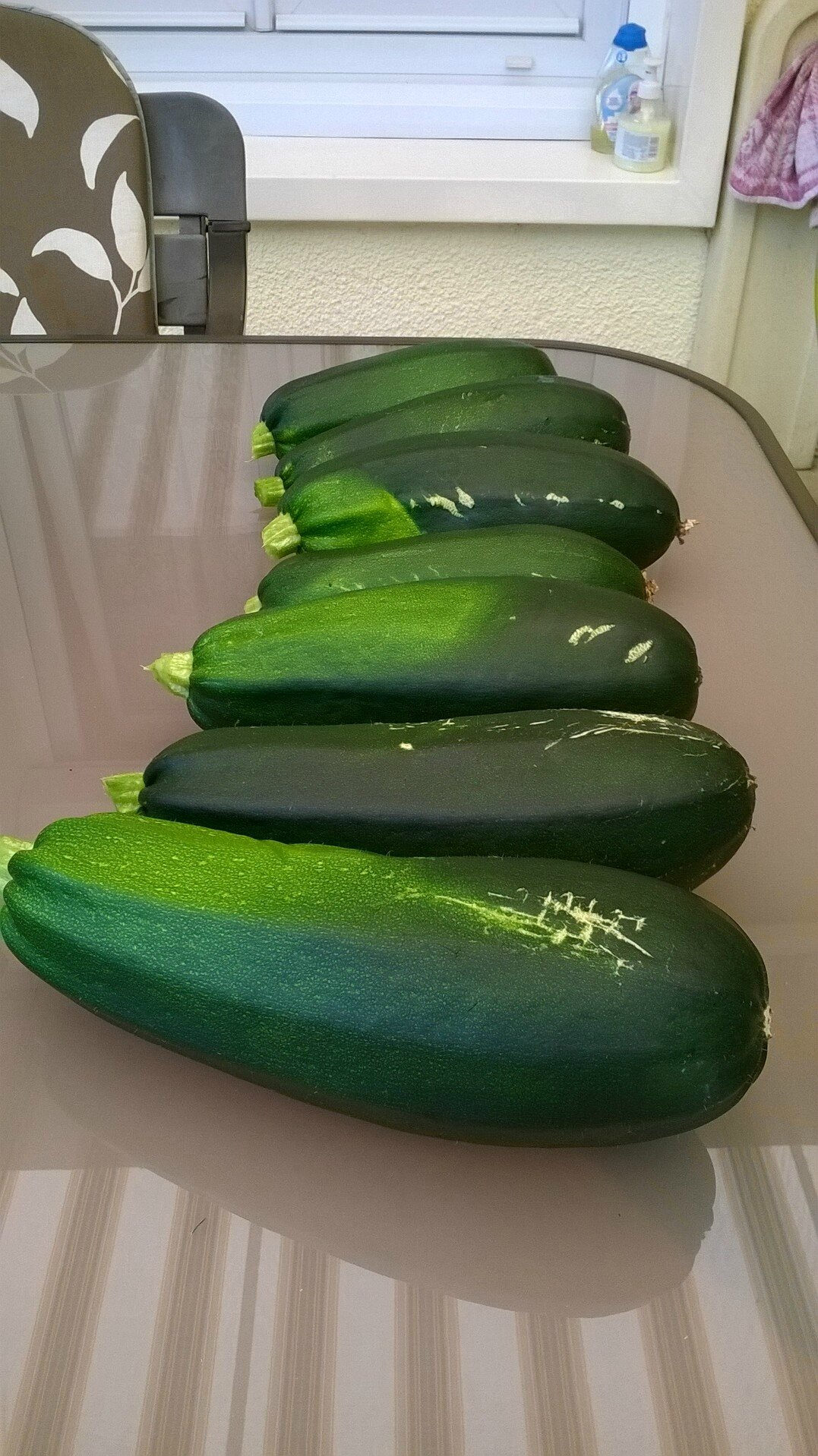 COURGETTES 18