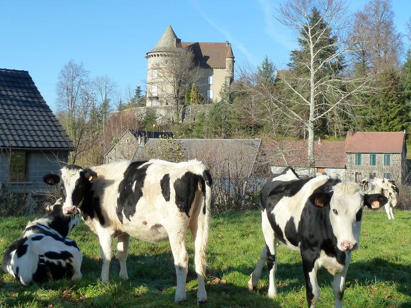 château d'Allagnat