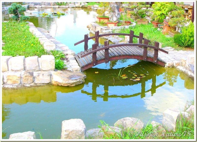 Le jardin Yili (23)