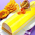 Bûche passion mangue coco