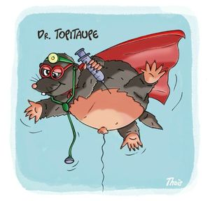 Dr topitaupe