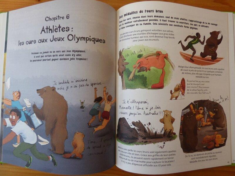 Tout sur l'ours (3)