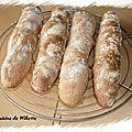Baguettes ciabatta