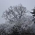 303 10 DECEMBRE 2008