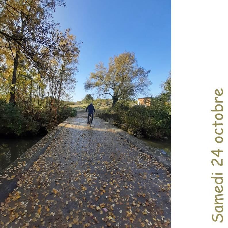 Course du Jour #24 octobre#