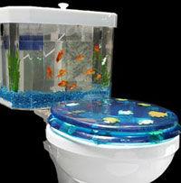 fisn_n_flush