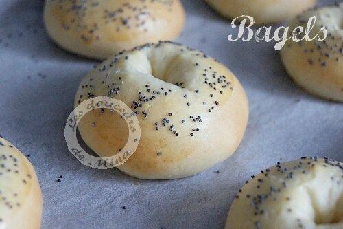 Bagels008