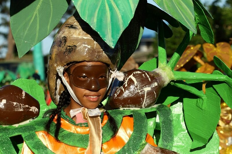 Carnaval 2017- Grande parade du littoral