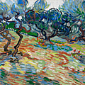 Dallas museum of art and van gogh museum co-organize first exhibition dedicated to van gogh's olive grove series