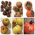 Les mois d'hiver - fruits de saison