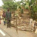 Bénin 2005 162