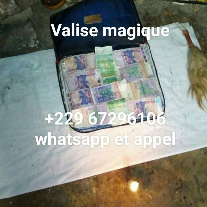VALISE MAGIQUE QUI MULTIPLIE D'ARGENT