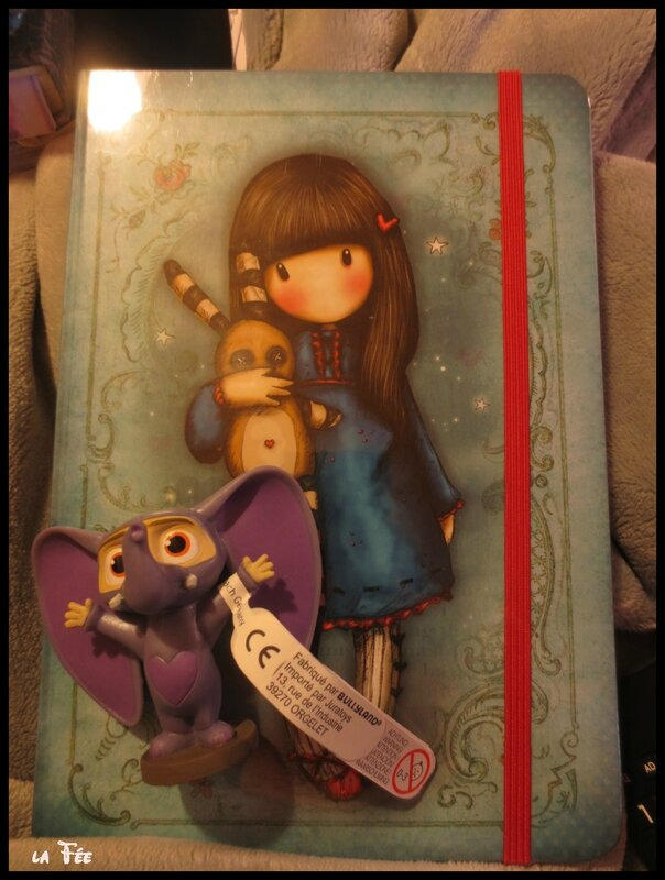cadeaux surprise et achats (14)