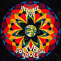 the polyversal souls – invisible joy (philophon, 2015)