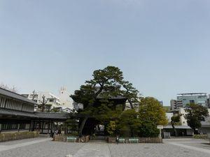 Canalblog_Tokyo03_13_Avril_2010_047