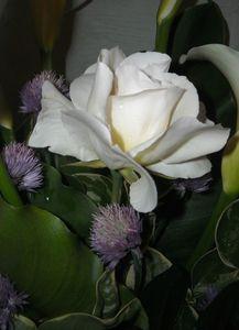 bouquet arome 020