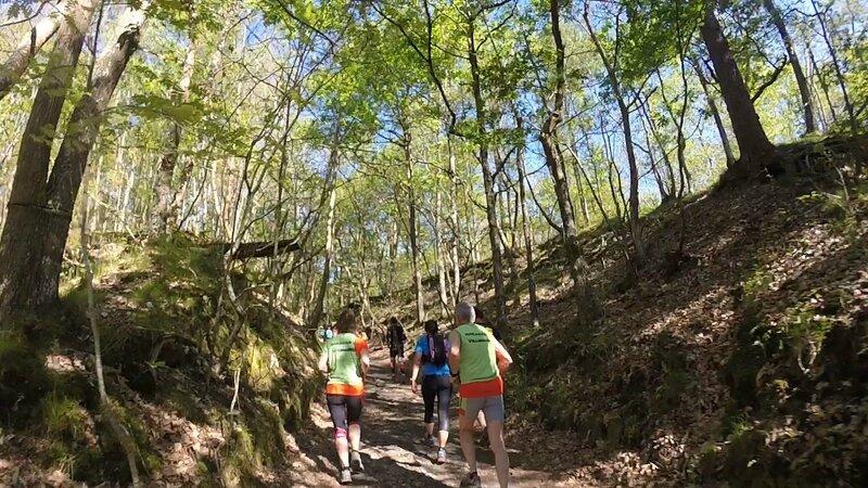 Trail de l'Orangerie de Bonnelles 2017 _ 10