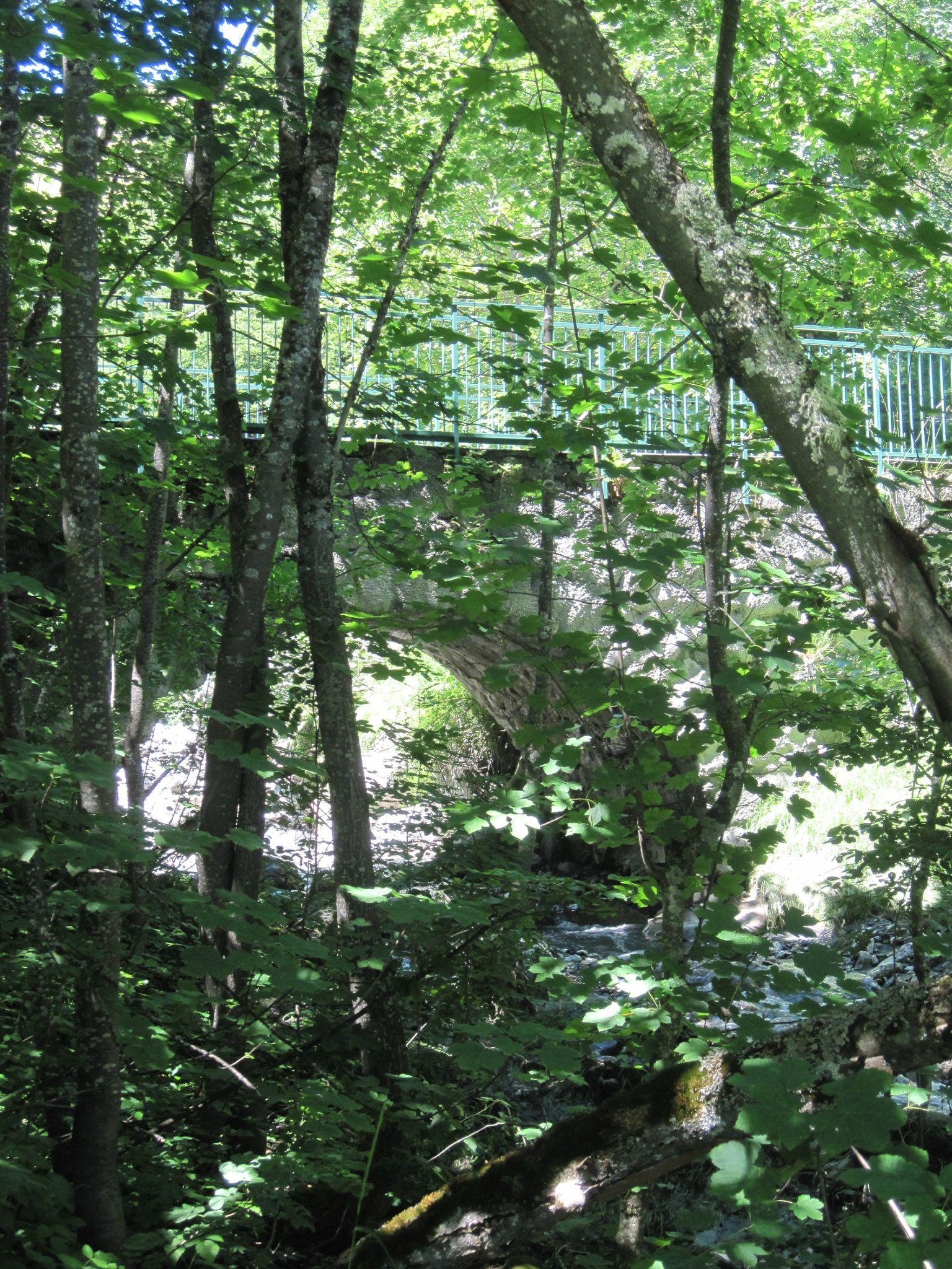 Le pont du Garney (9)