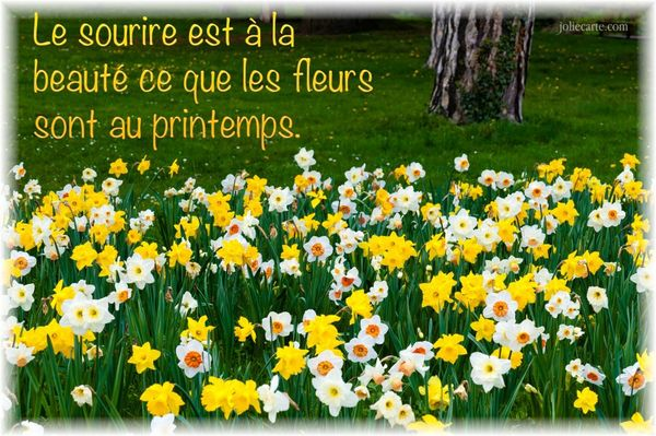 2013printemps-photo