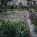 2009 07 04 Mon jardin