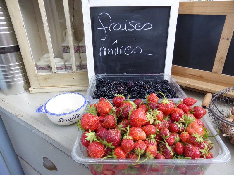 17-fraises, mûres